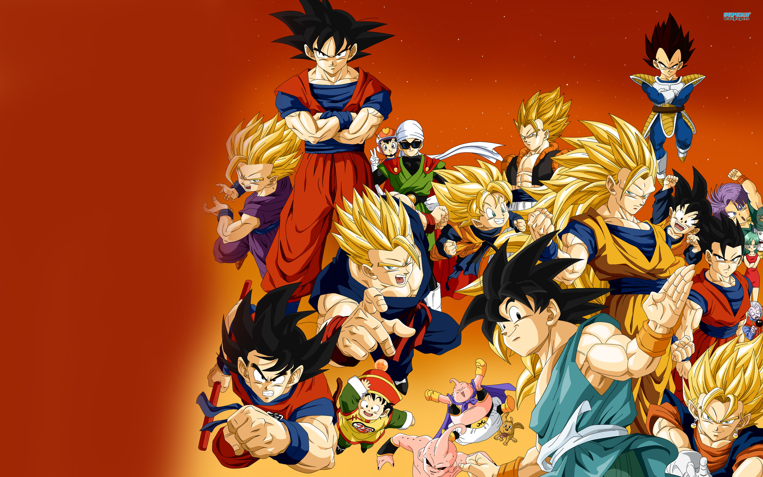 Dragon Ball Z wallpaper 2560x1600 jpg