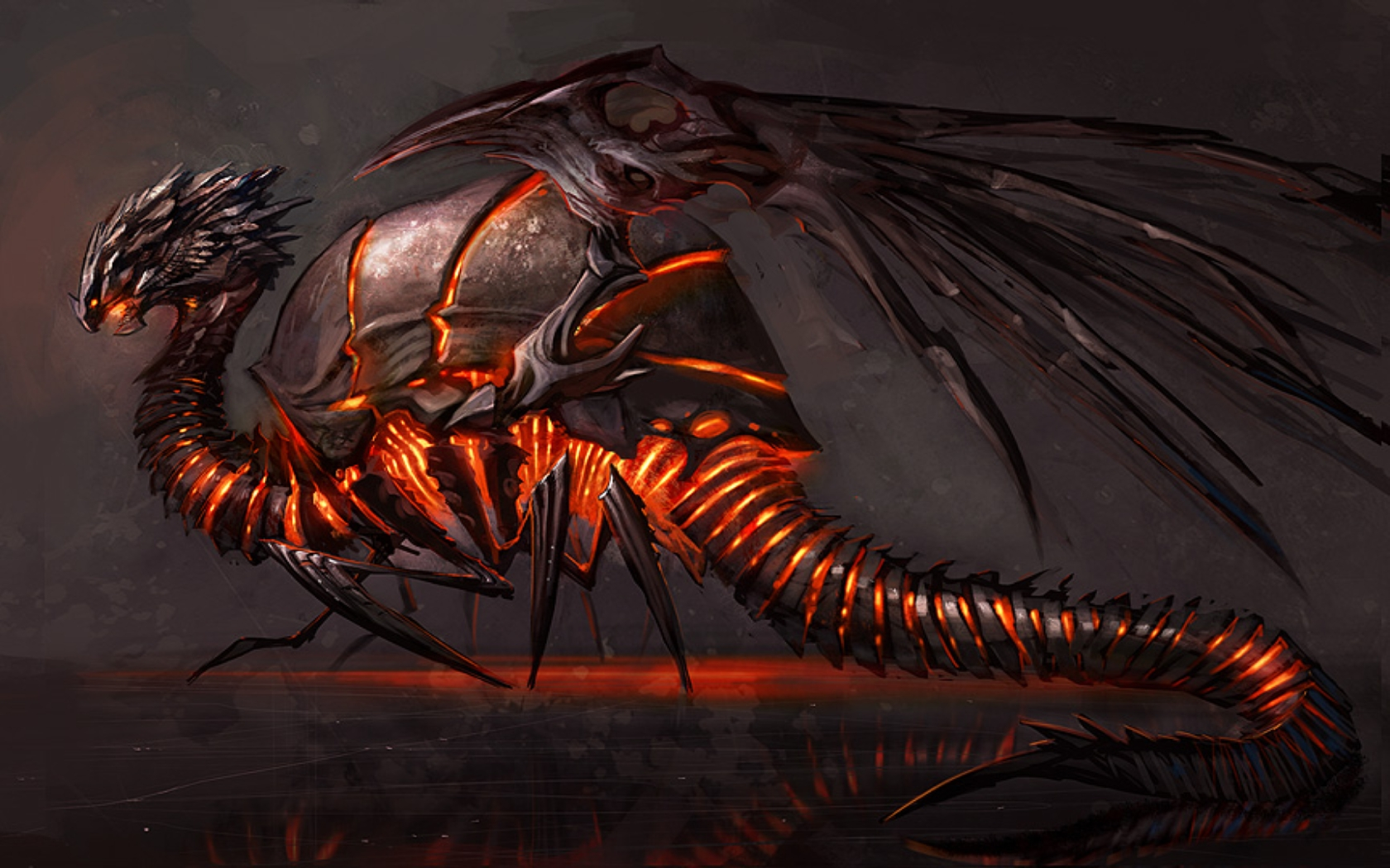 Dragon Fantasy wallpaper | 1680x1050 | #42300