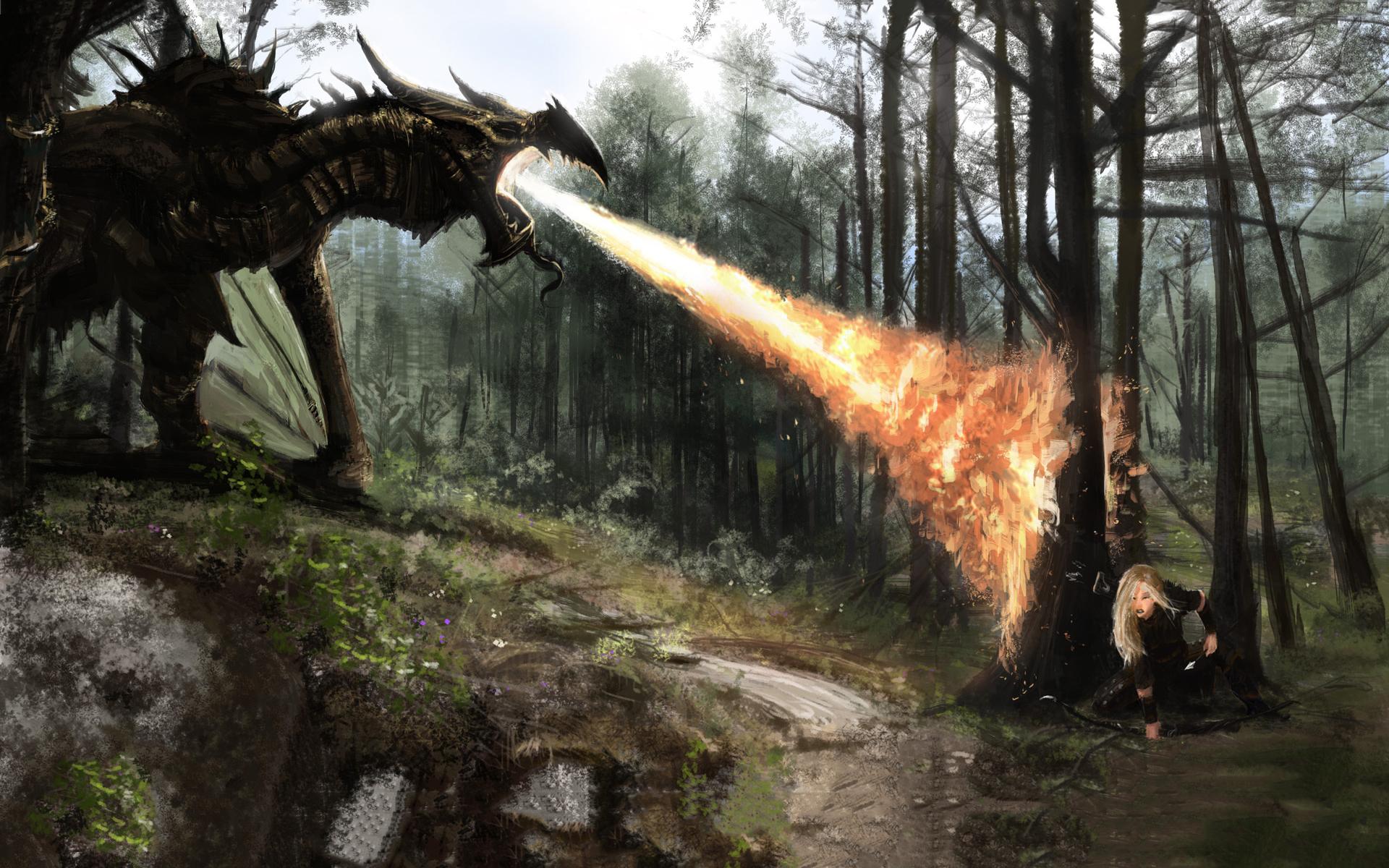 Dragon fire skyrim