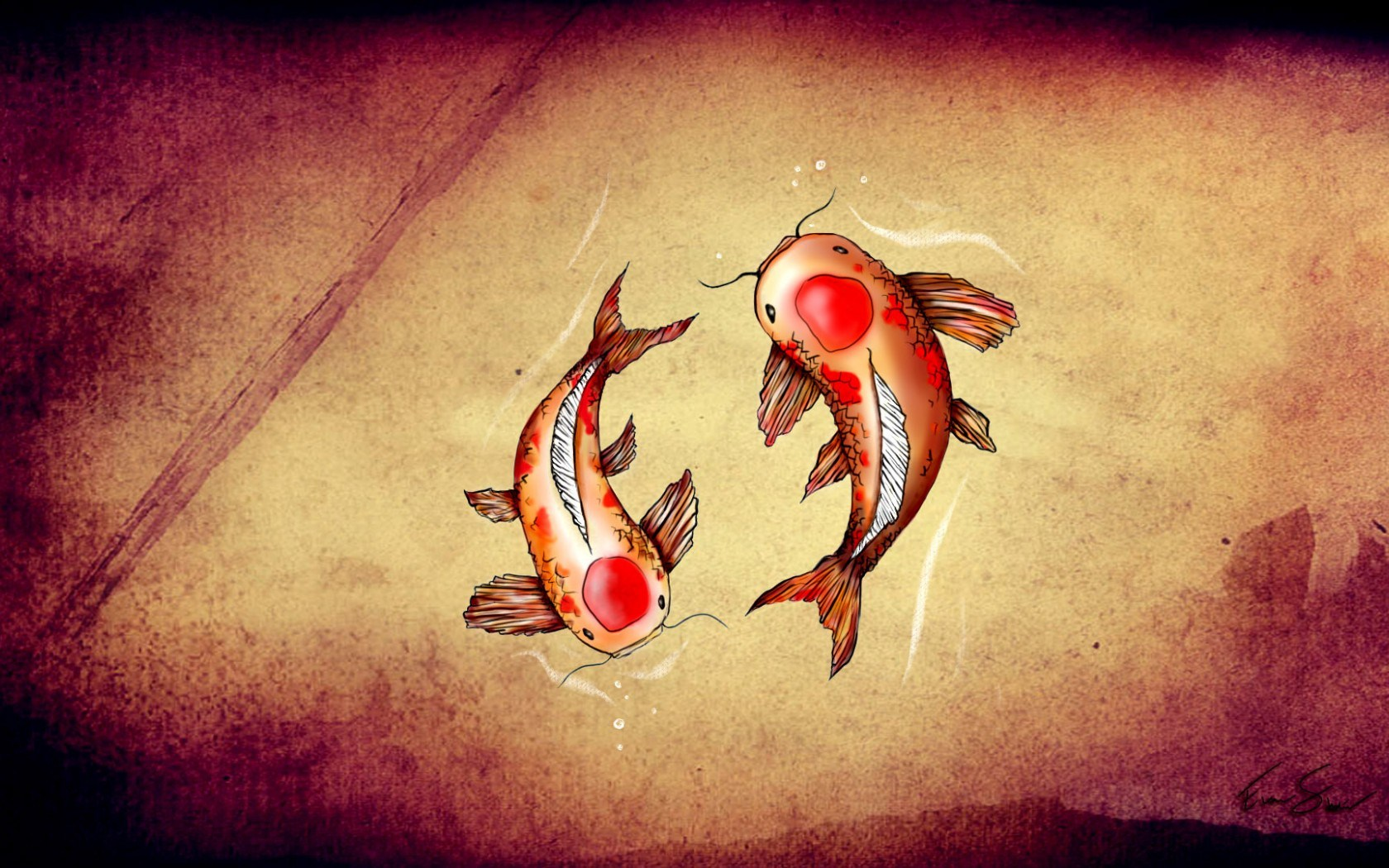 Drawing Koi Fish Art