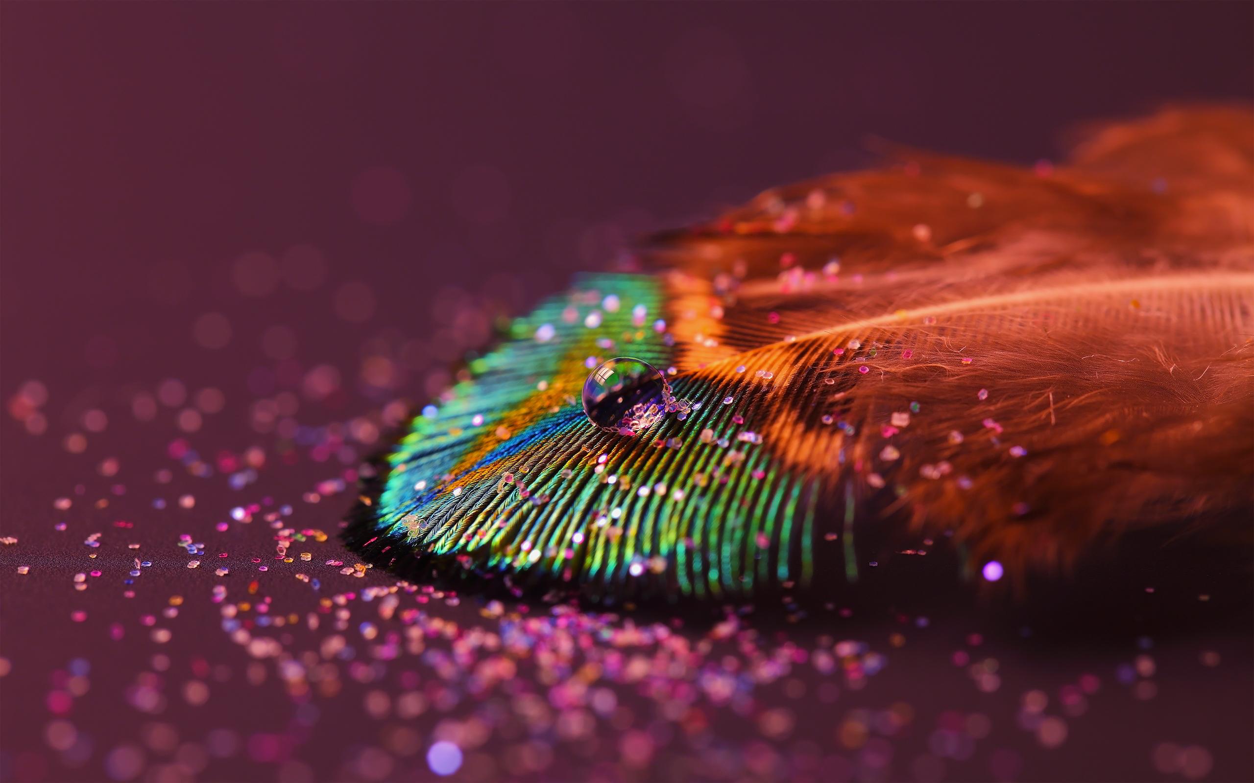 Drop feather rainbow
