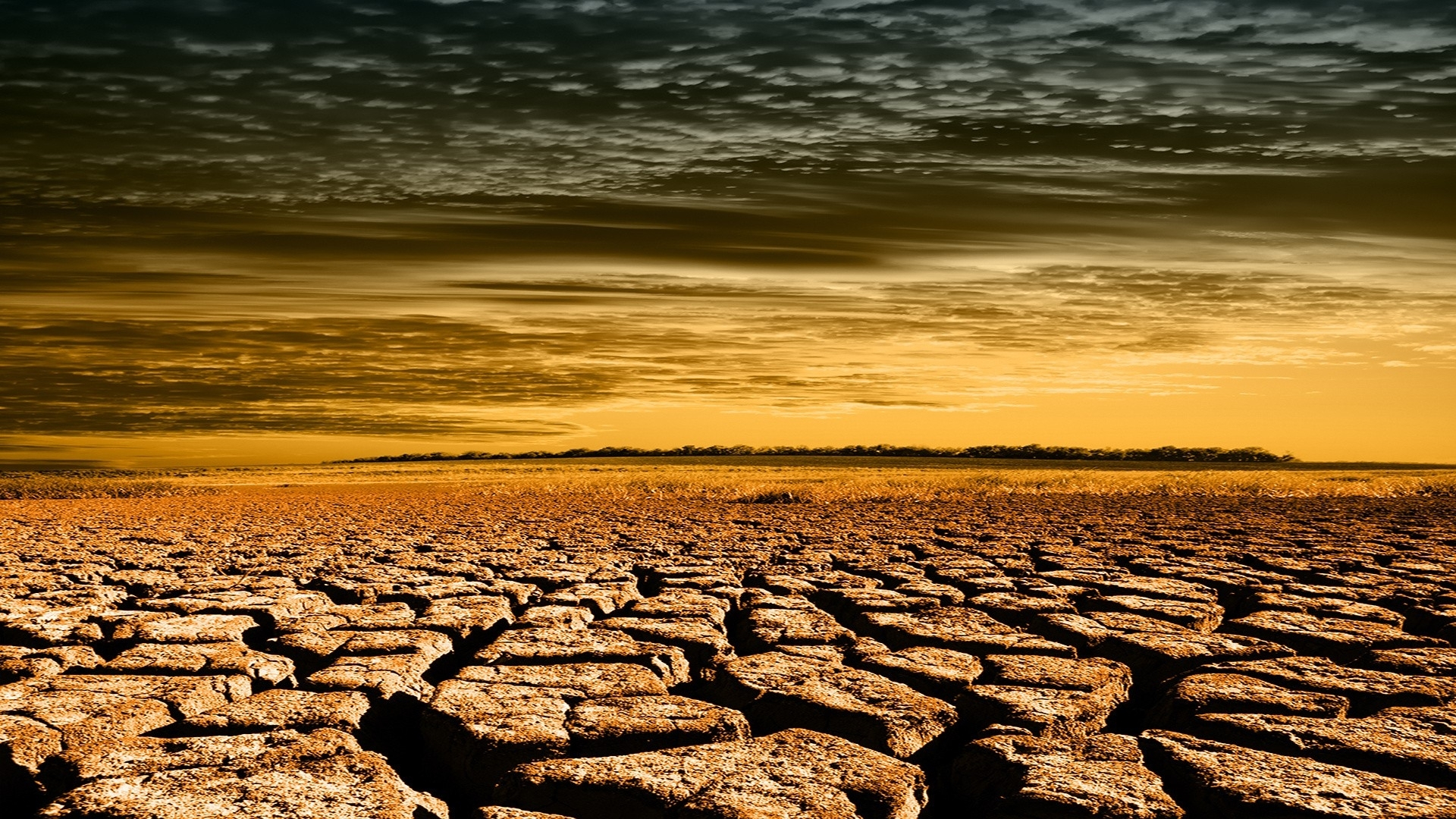 Drought Cracked Fields HD wallpapers