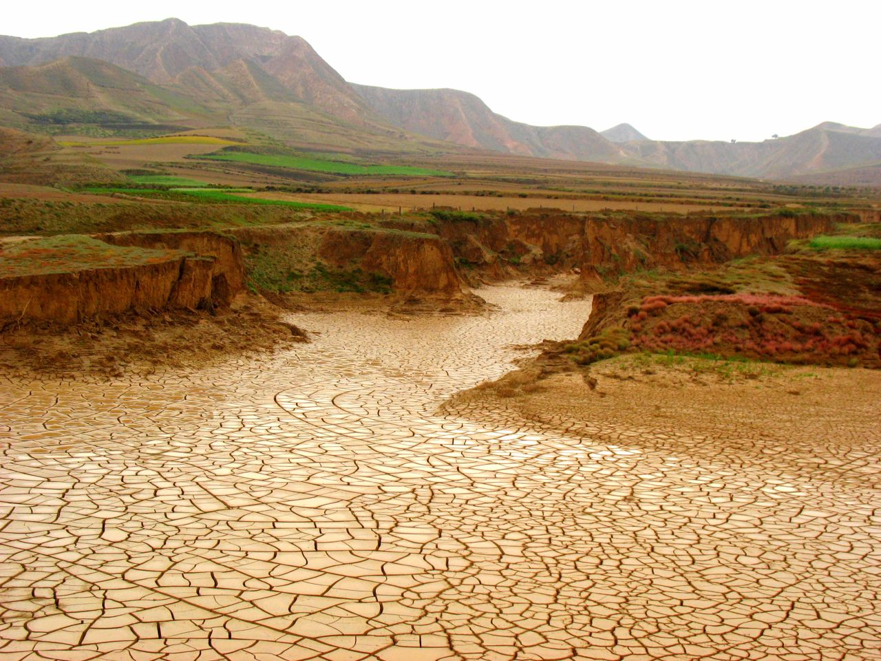 A new scientific study indicates the turn-of-the-century drought in the North American West was the worst of the last millennium—with major impacts to the ...