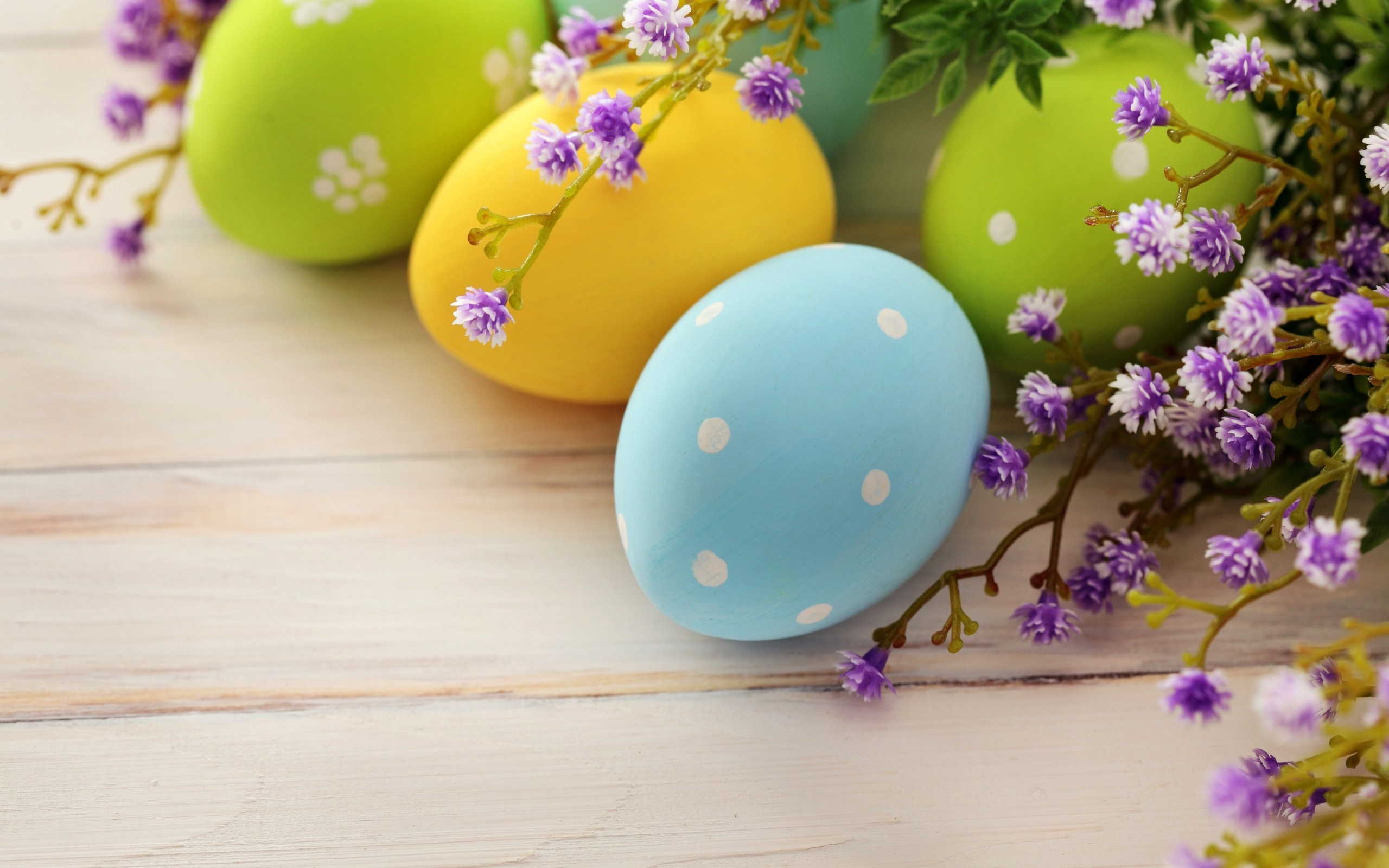 Easter Spring Holiday Eggs Branch Flowers