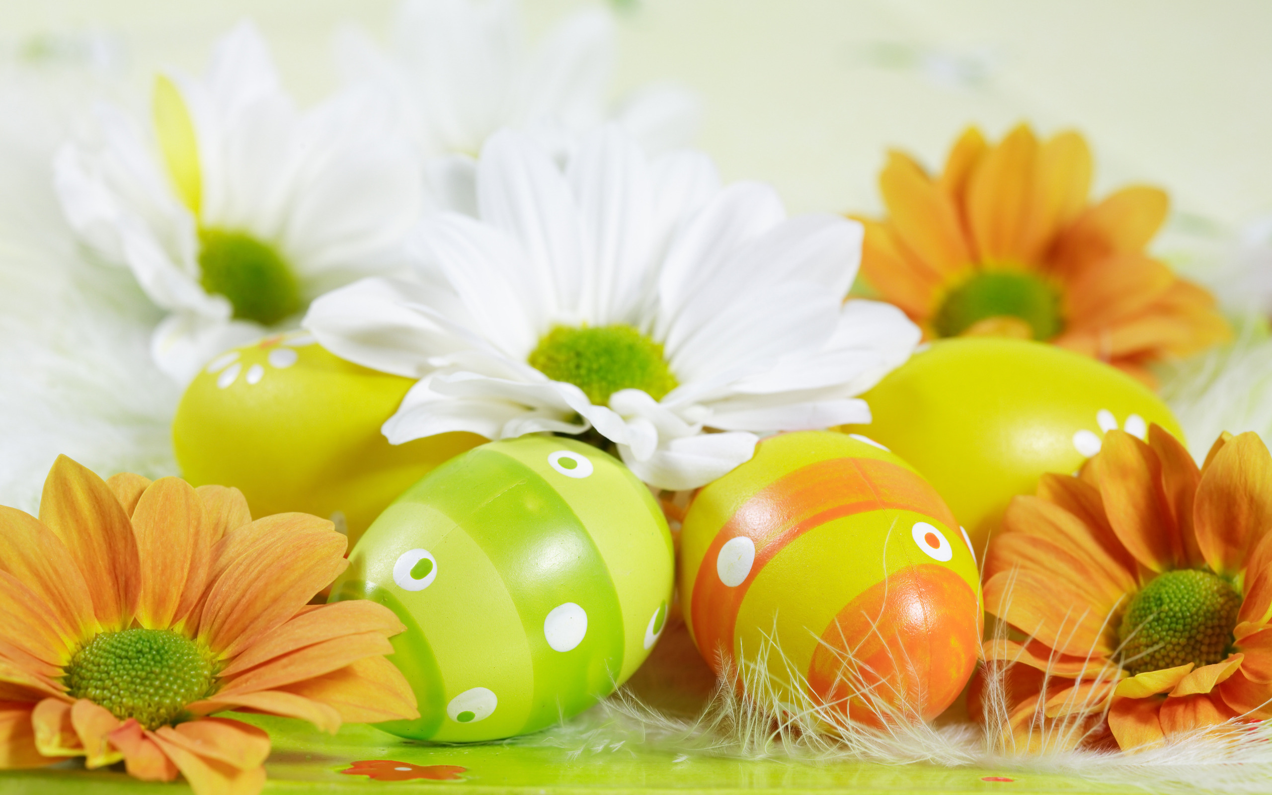 Click Here for: Easter Sunday 2015