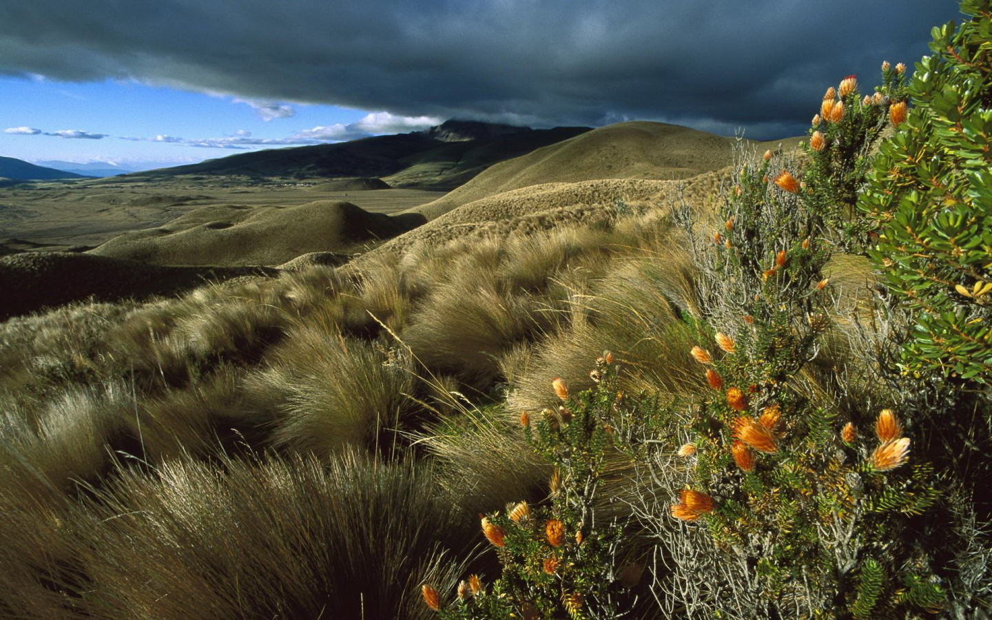 Amazing Ecuador Wallpaper 6080