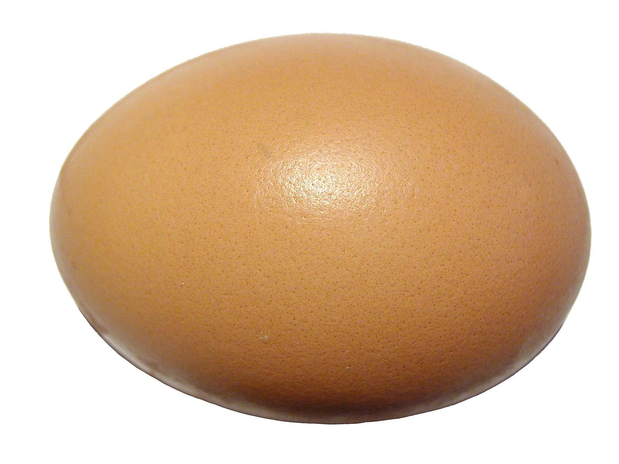 eggs egg