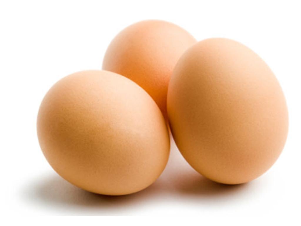 Iranians make SPF eggs