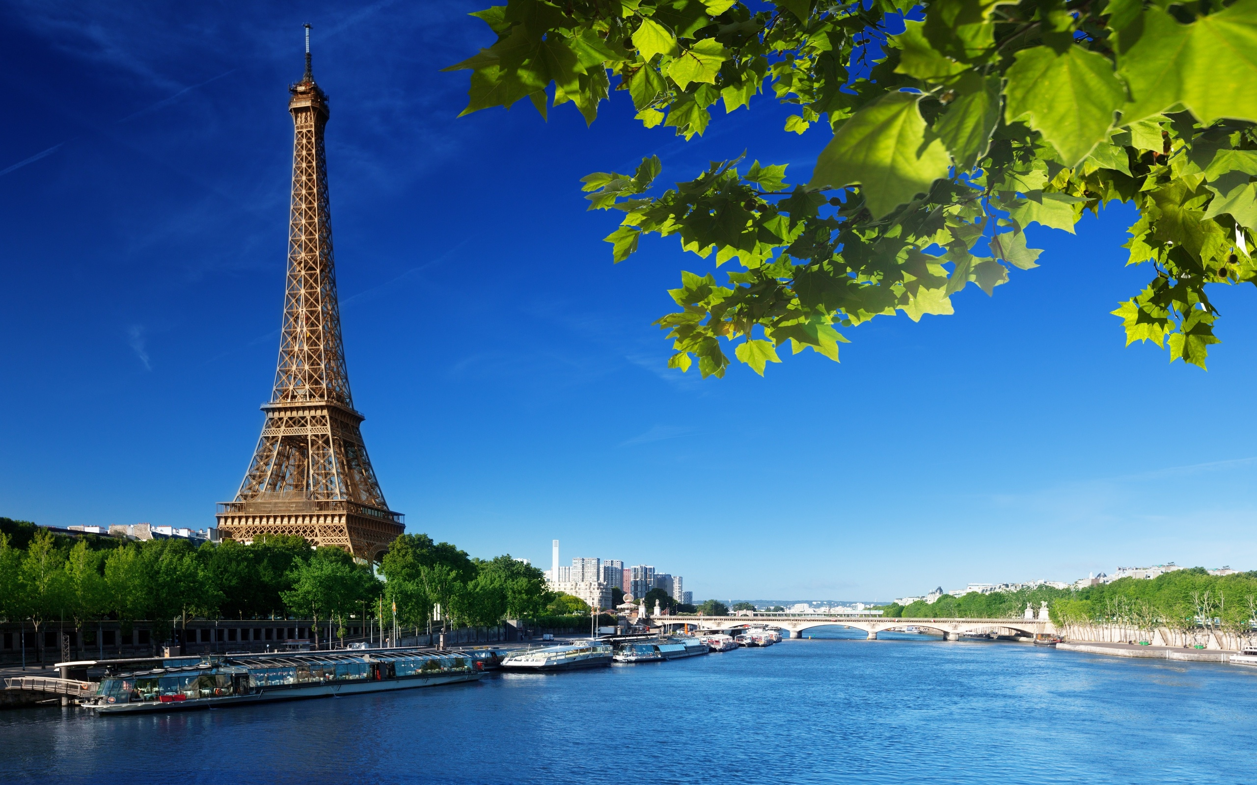Eiffel Tower Wallpaper; Beautiful Eiffel Tower Wallpaper