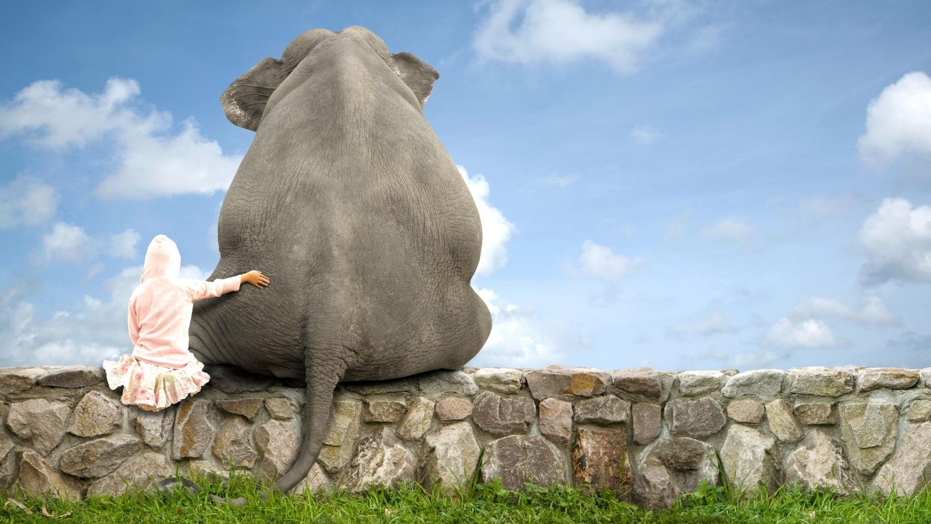 Elephant-Friend-1920x1080