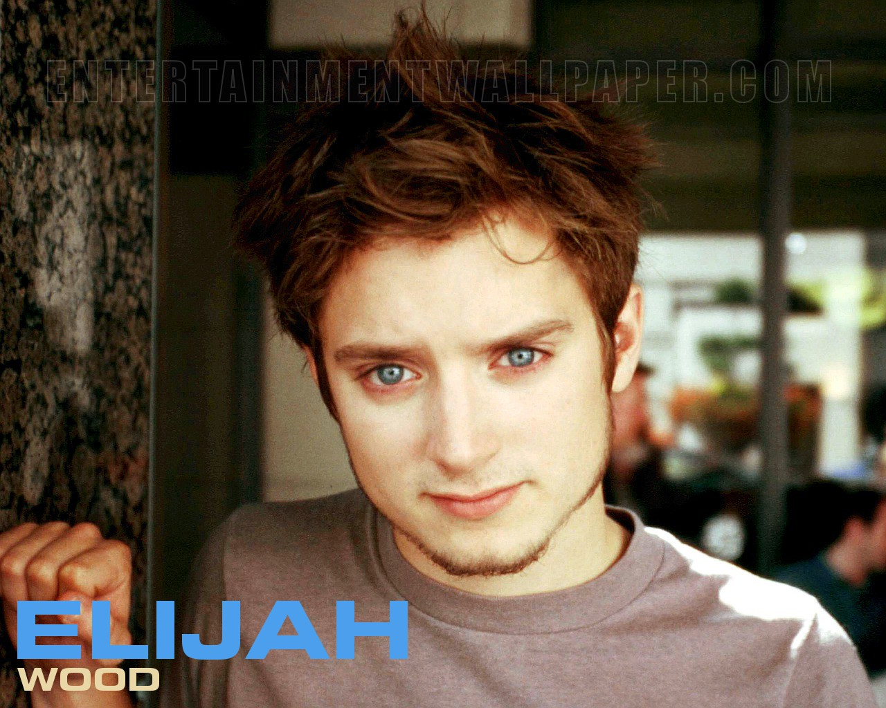 Elijah Wood Wallpaper - Original size, download now.