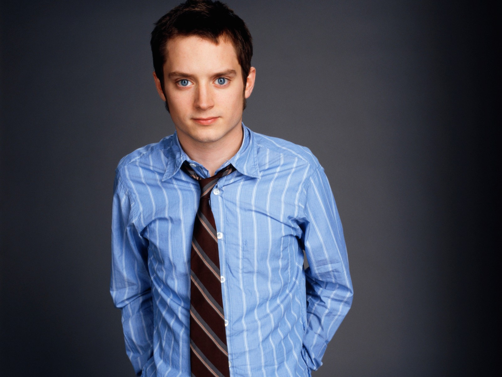 "Download the following Elijah Wood Pictures 39964 by clicking the orange button positioned underneath the ""Download Wallpaper"" section."
