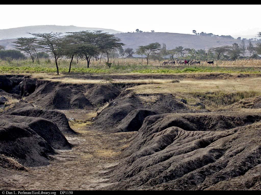 Erosion near Arusha, Tanzania