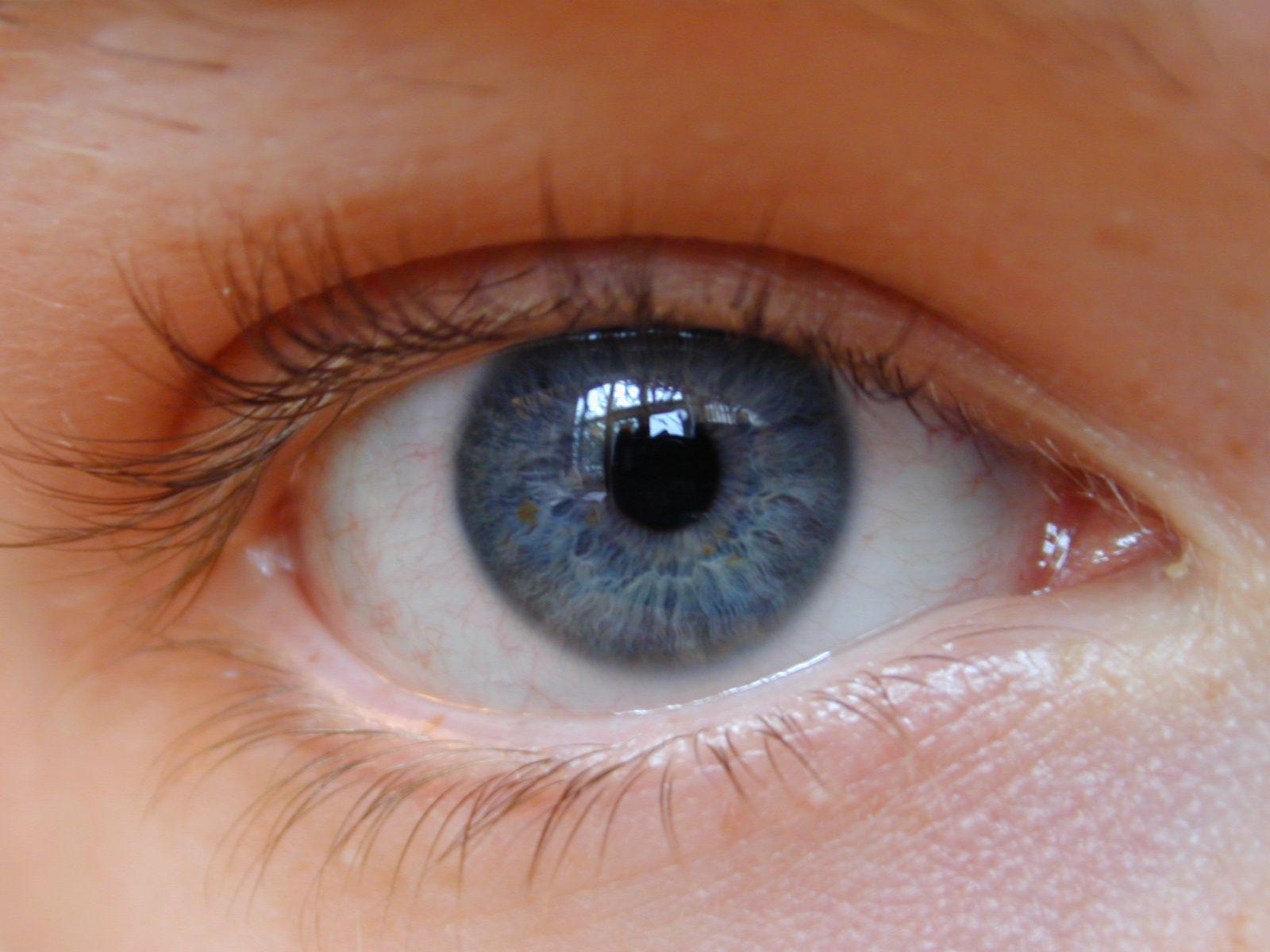 Sintel's Eyes