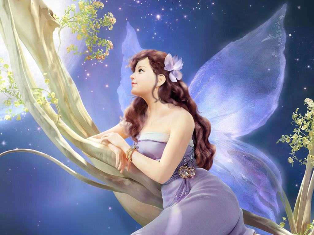yorkshire_rose Fairy Wallpaper