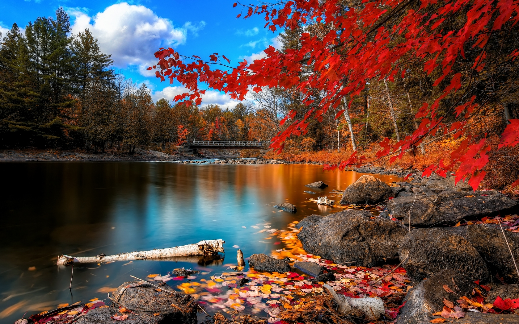 Fall Scenery Wallpaper