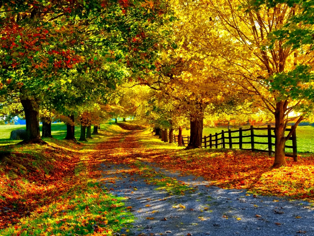 Fall Wallpaper 381 Desktop Season