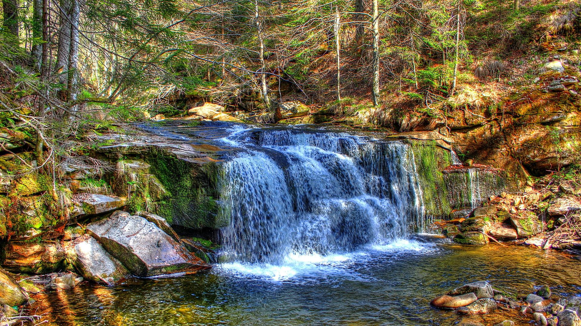 Fantastic forest waterfall hdr HQ WALLPAPER - (#96793)