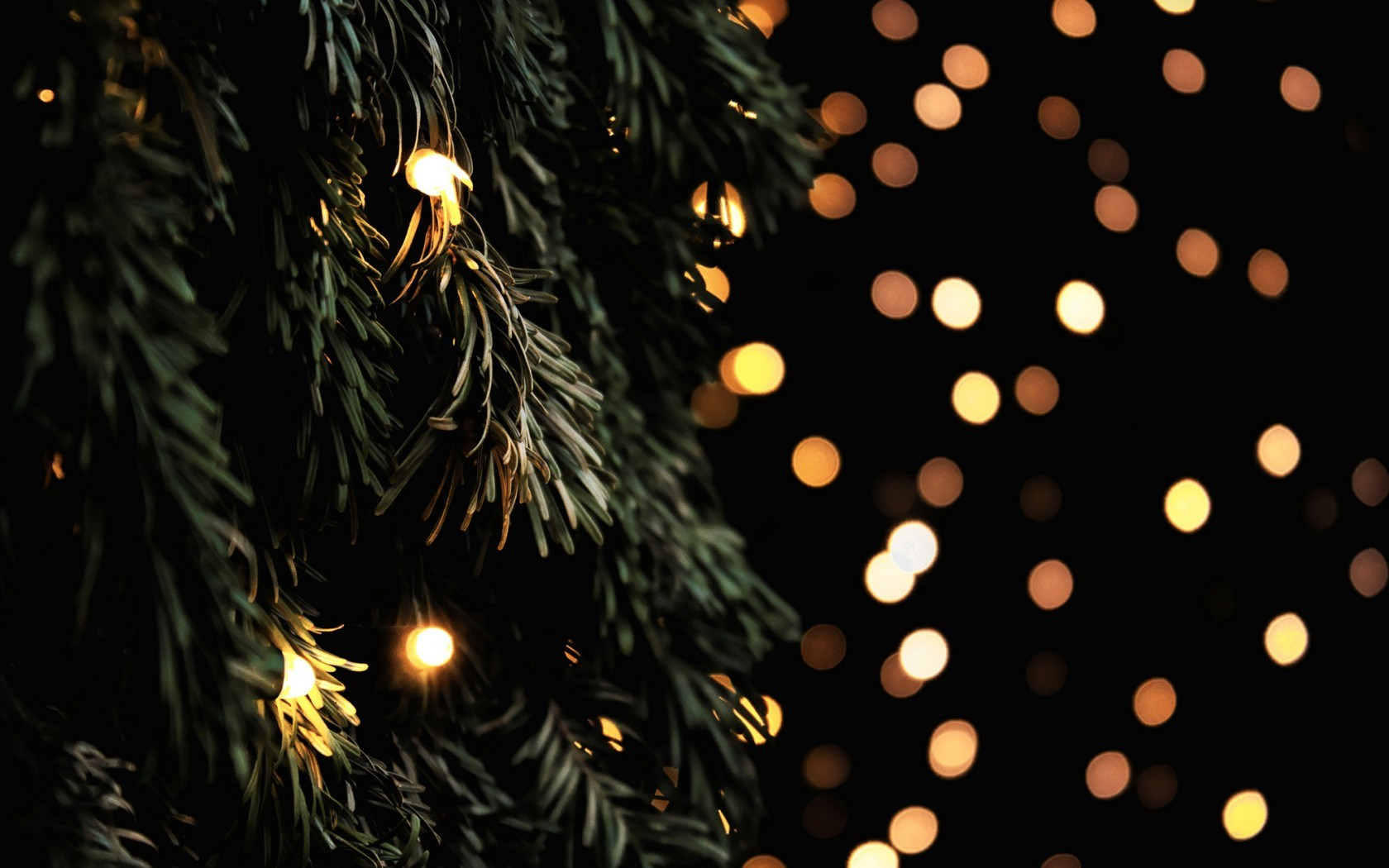"Download the following Fantastic Garland Lights Wallpaper 41112 by clicking the orange button positioned underneath the ""Download Wallpaper"" section."