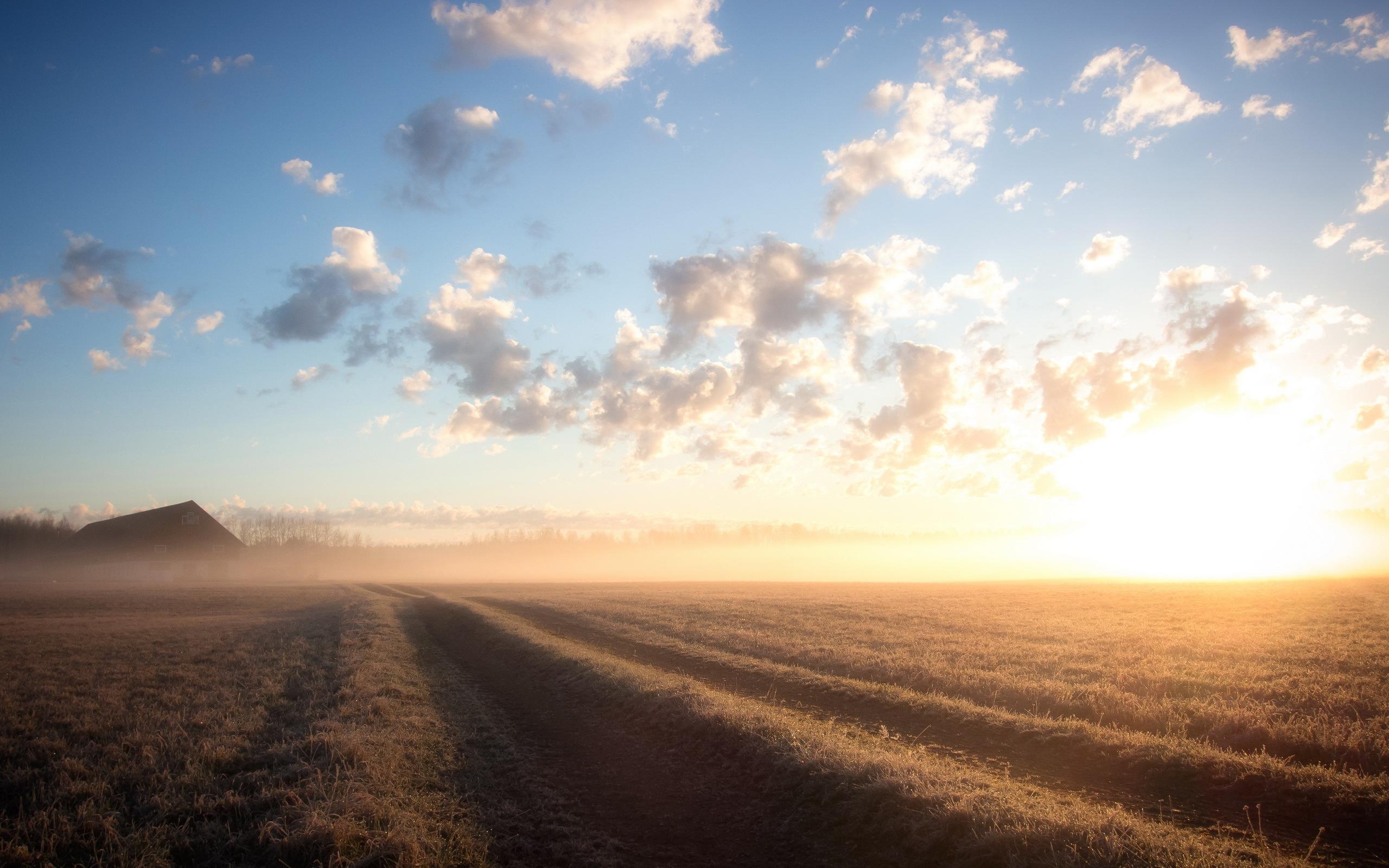 Fantastic Morning Fog Wallpaper