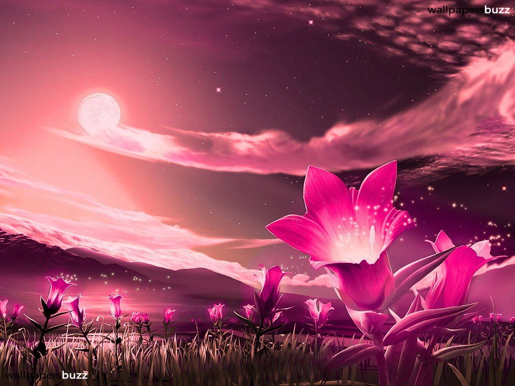 Fantastic Pink Flowers Wallpaper