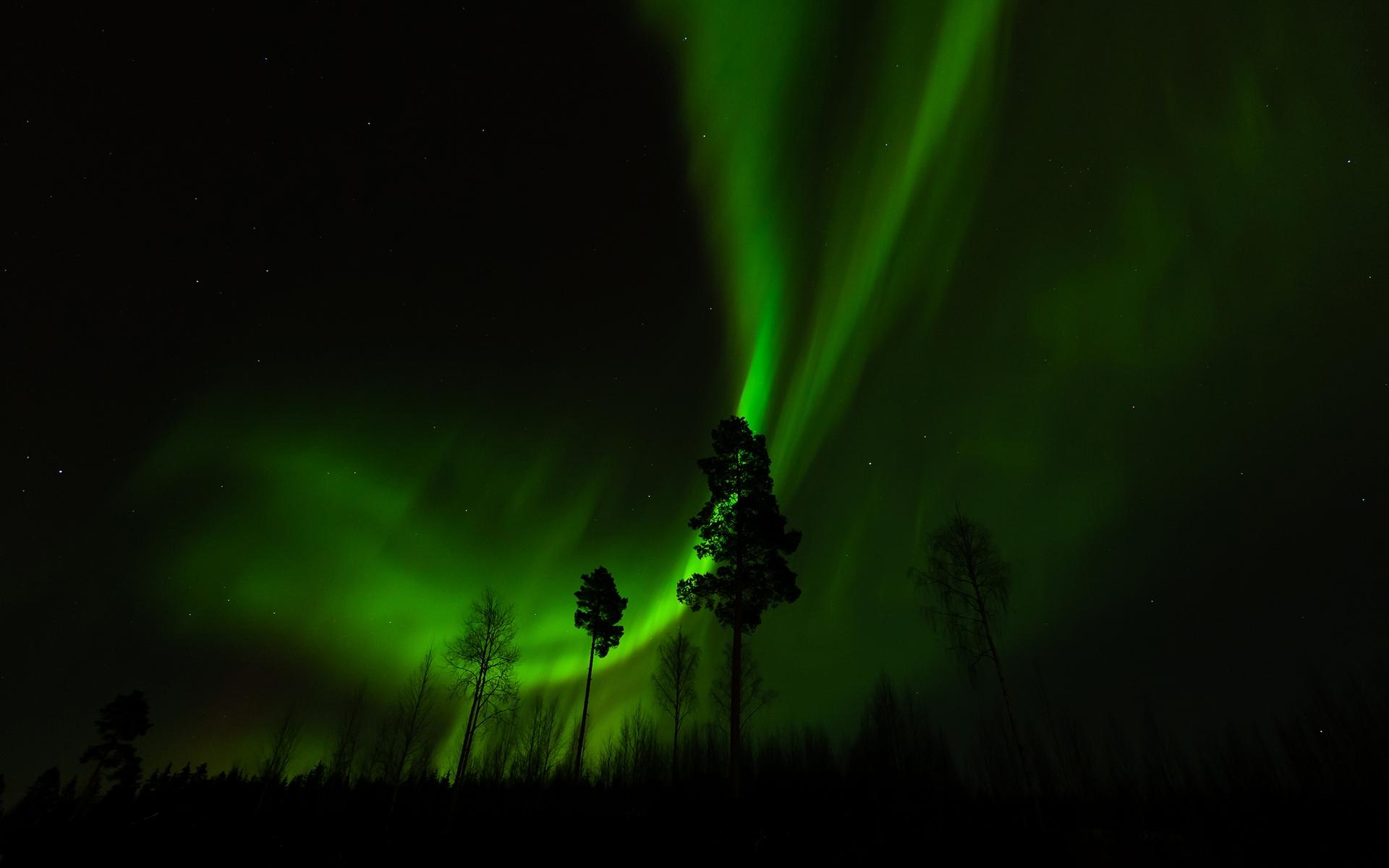 Fantastic Polar Lights Wallpaper