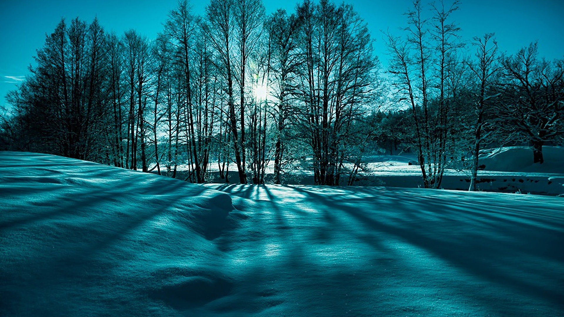 Fantastic Winter Scene In Monochrme HD Desktop Background wallpaper