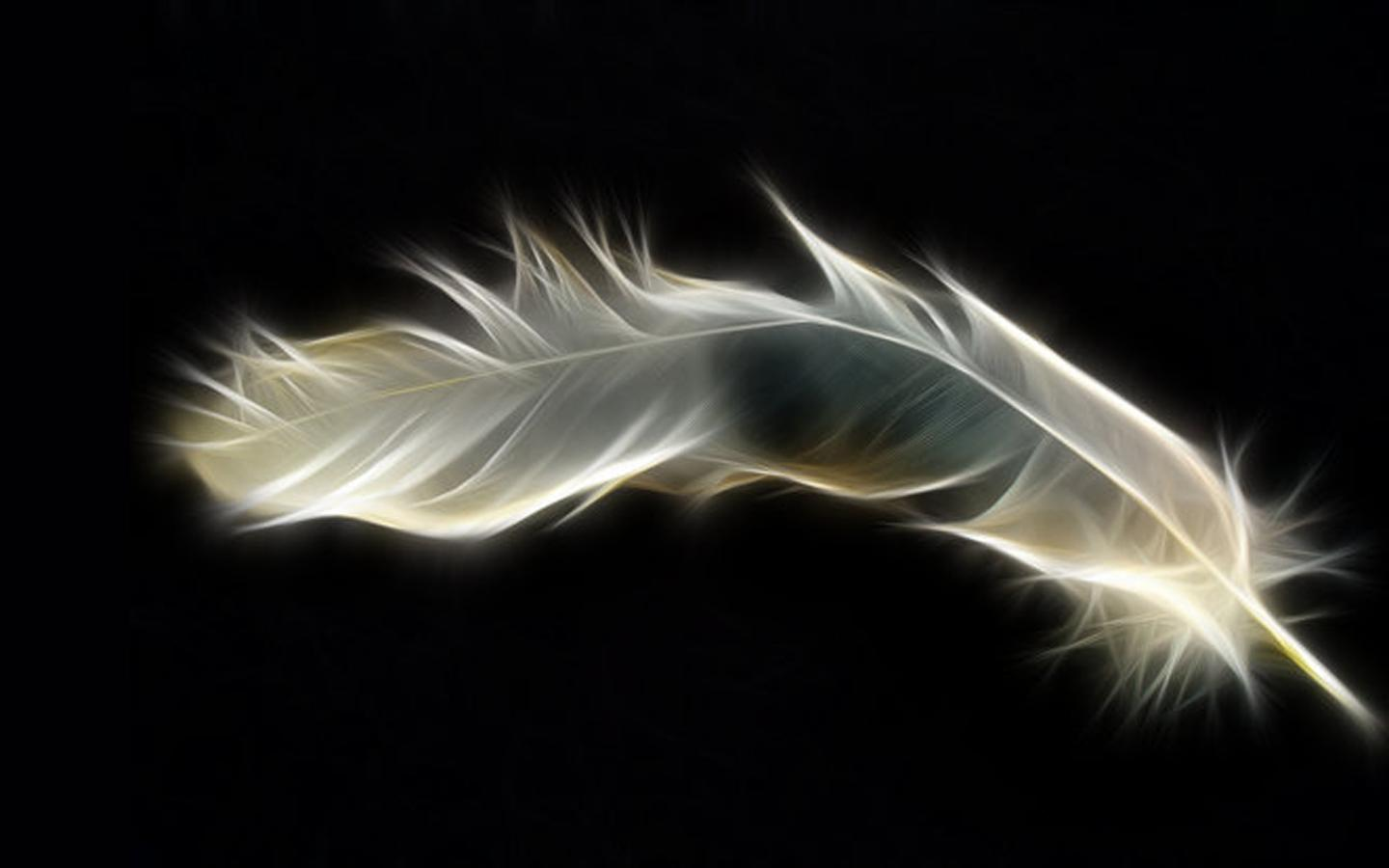 Abstract Feather Wallpaper