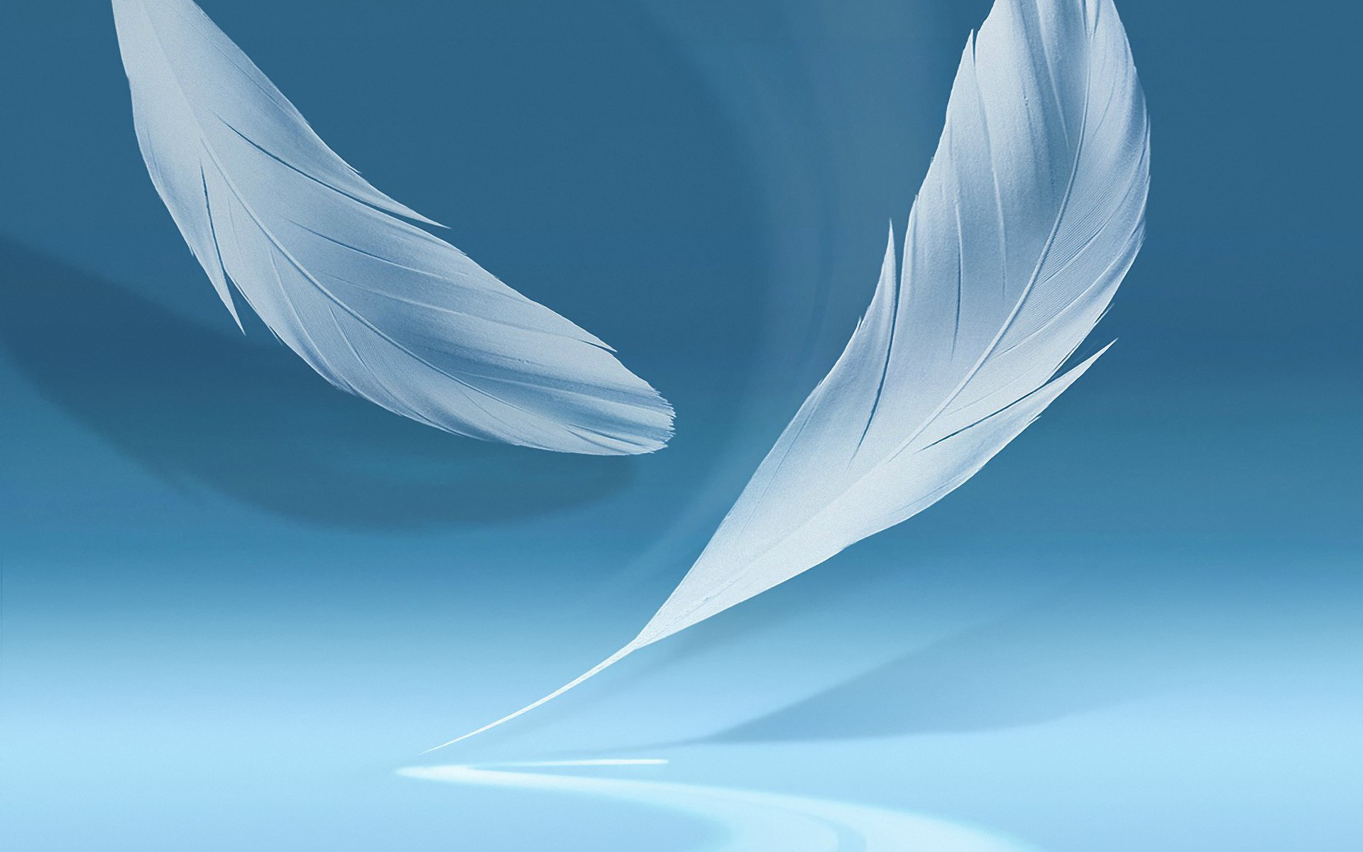 Feather Wallpaper