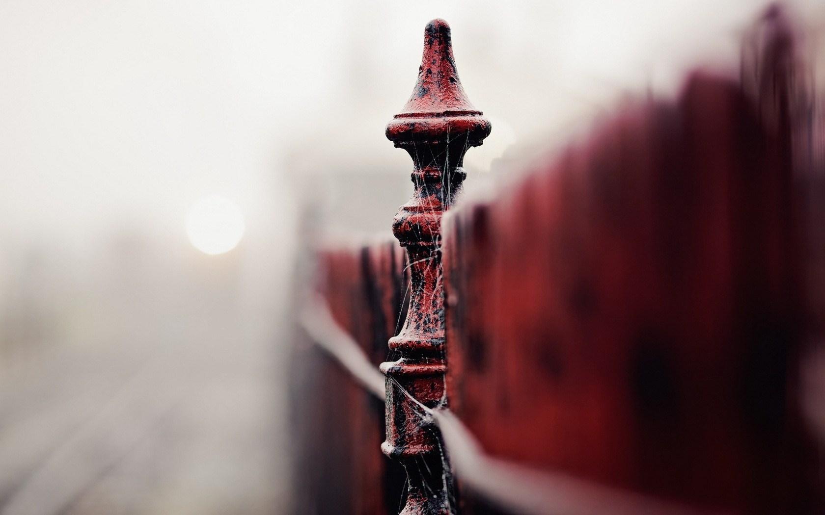 Fence Close-Up Fog Photo