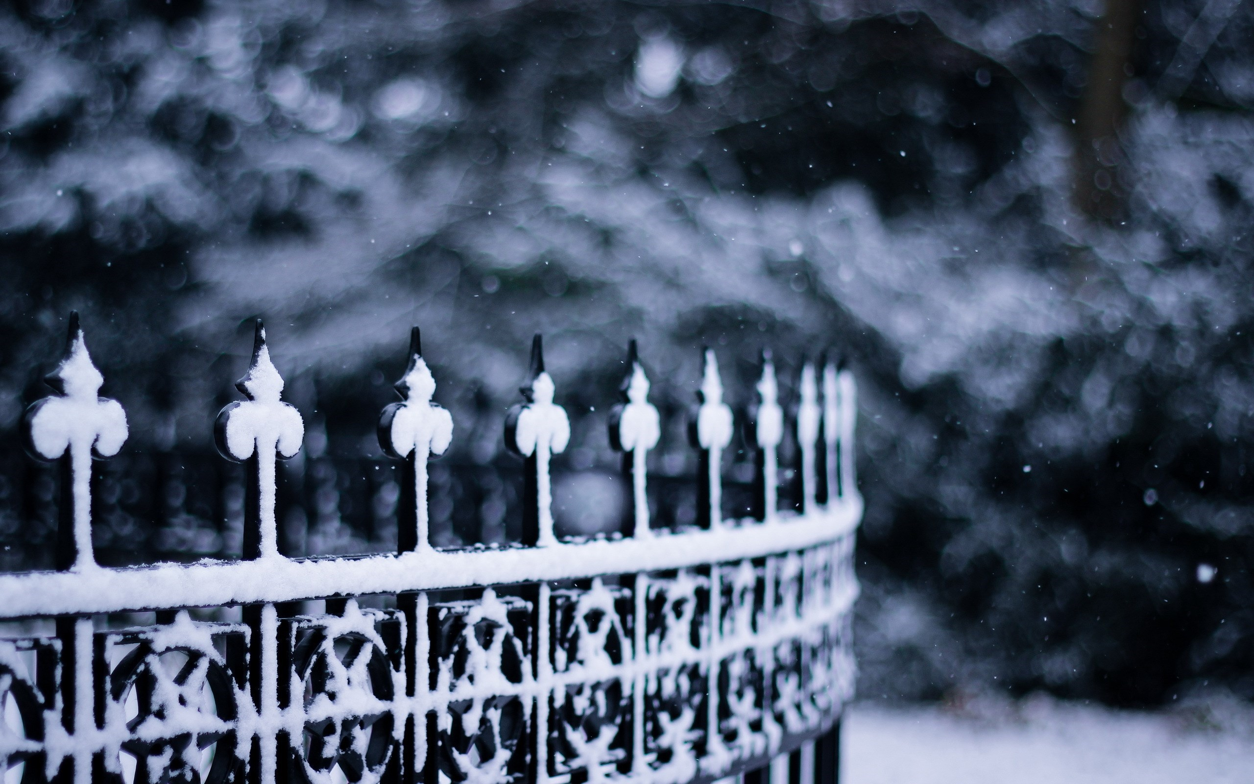 Fence Snow Snowflakes Winter