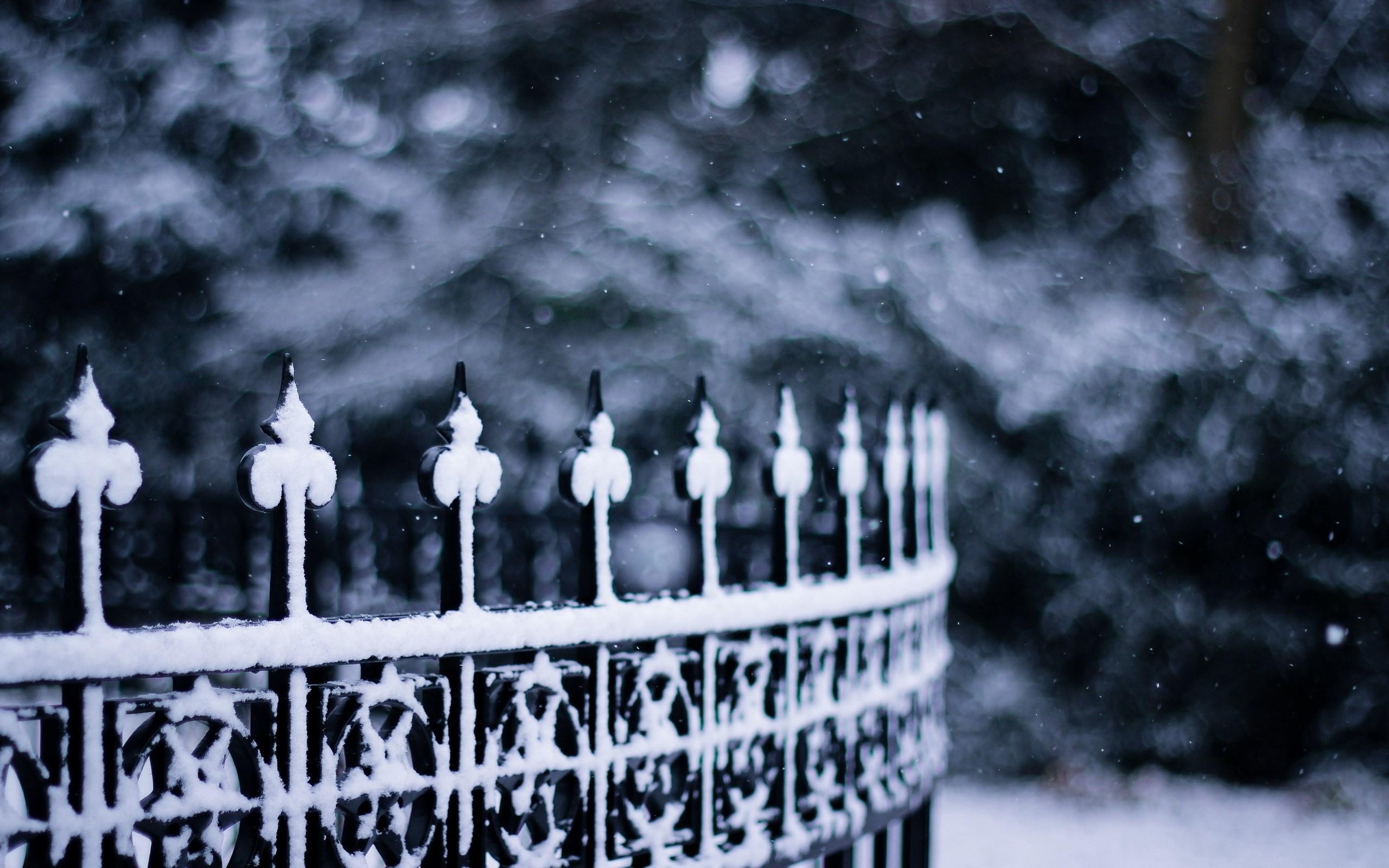 Fence Snowflakes Winter