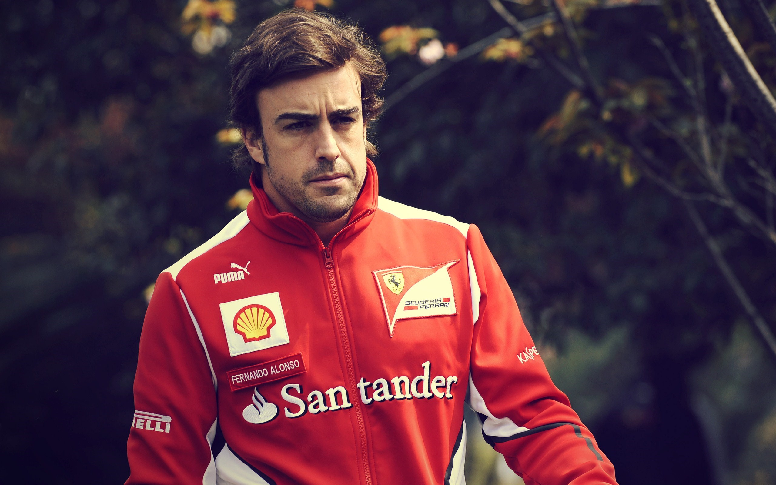 Fernando Alonso Driver Formula 1 Ferrari Photo