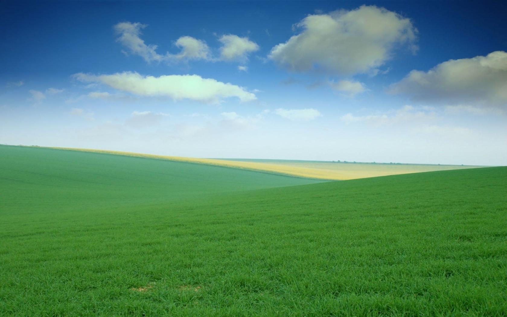 Download Green Field wallp wallpaper | Unknown