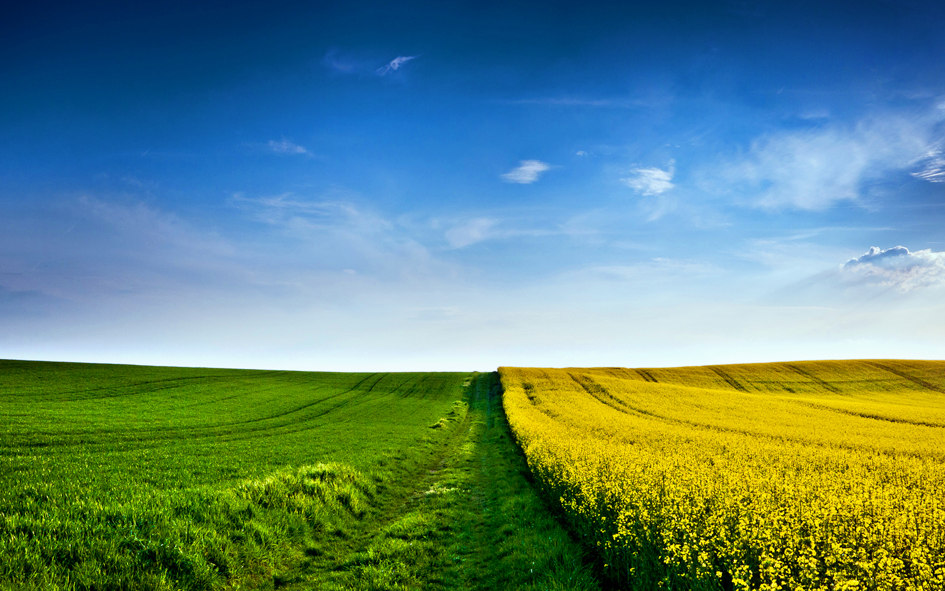 Field Wallpaper; Field Wallpaper; Field Wallpaper ...