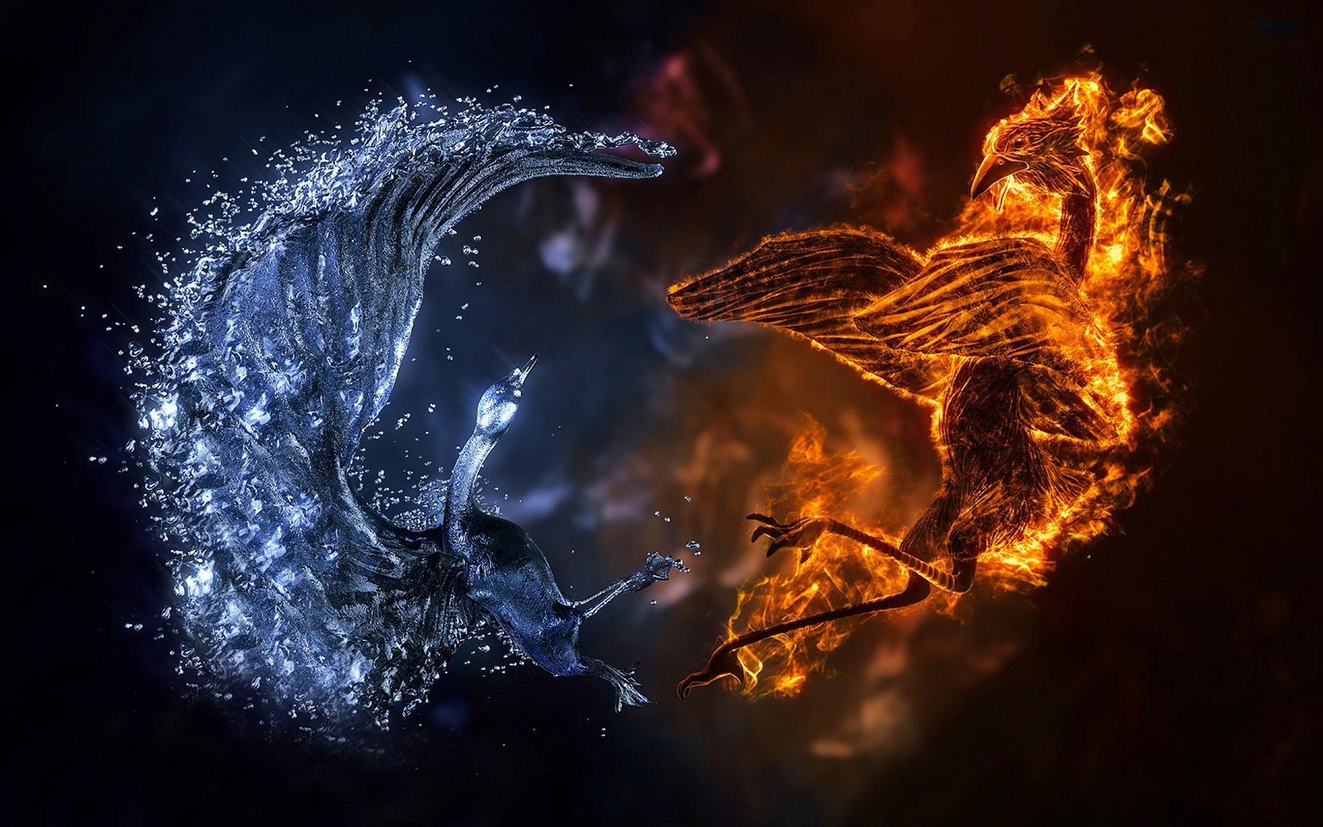 Fire Ice Birds