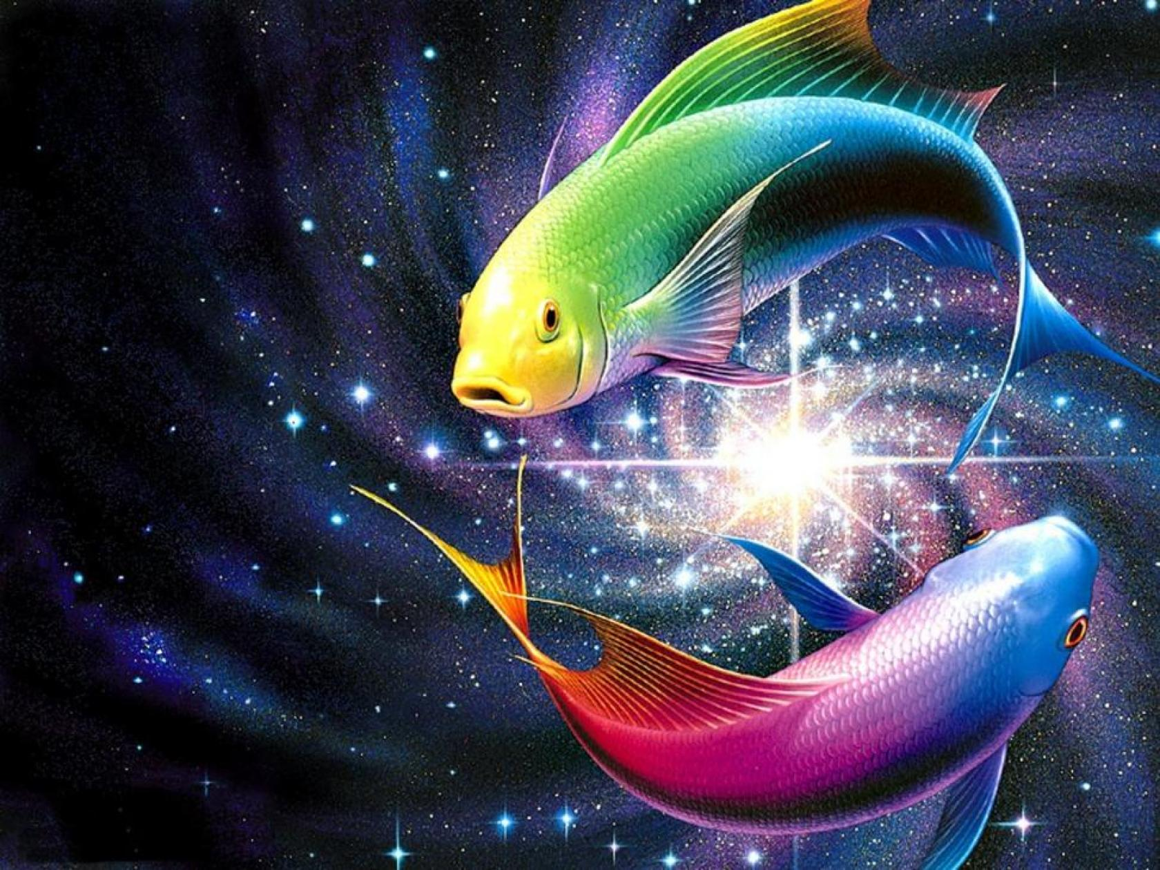 Fish Wallpaper: Mesmerizing Fish Wallpaper 1680x1260px