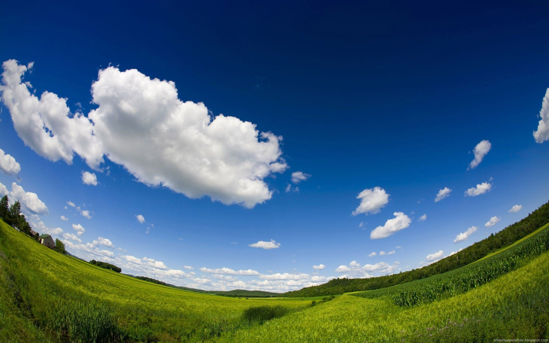 Fisheye Landscape Wallpaper 15893
