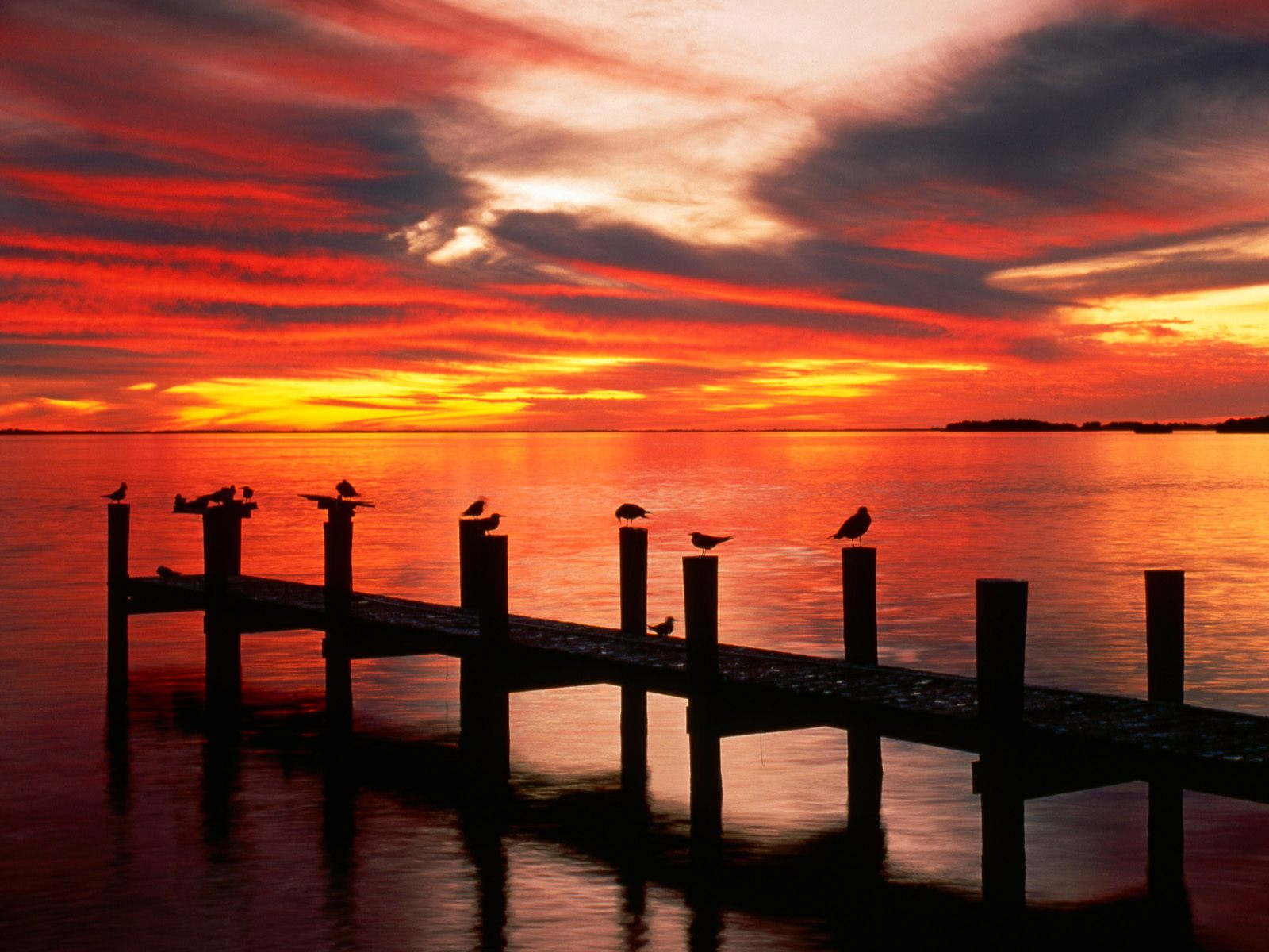 Florida Sunset Wallpaper