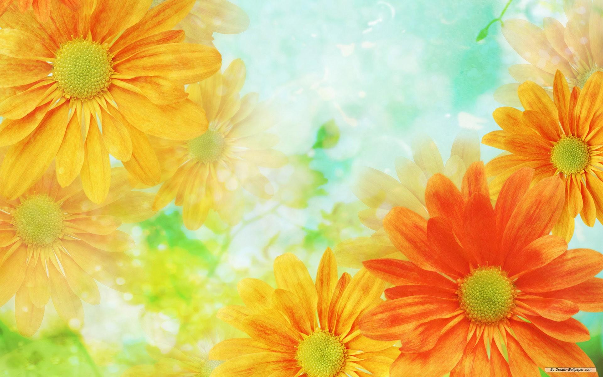 Download. Description wallpaper: Flower Backgrounds ...