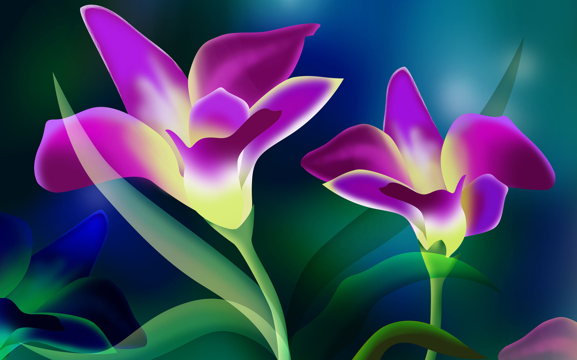 Flowers Wallpaper 46808