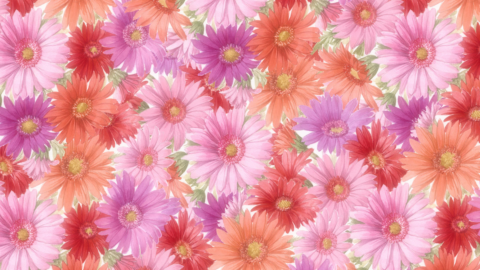 Widescreen High Resolution Free Flower Wallpaper