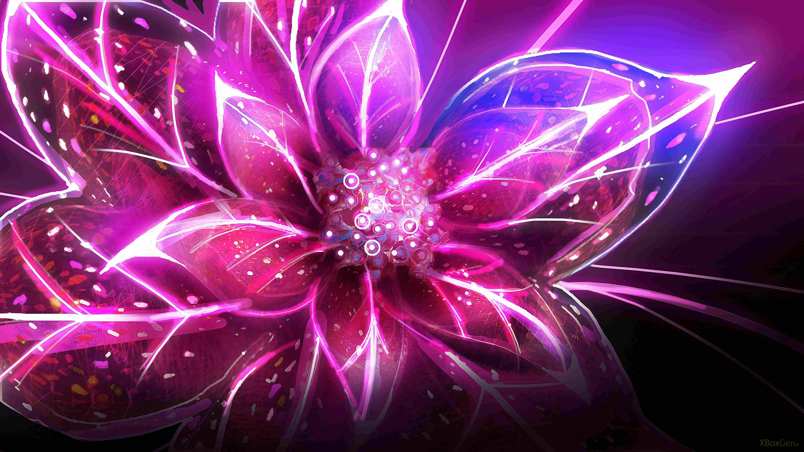 Abstract Flowers Light