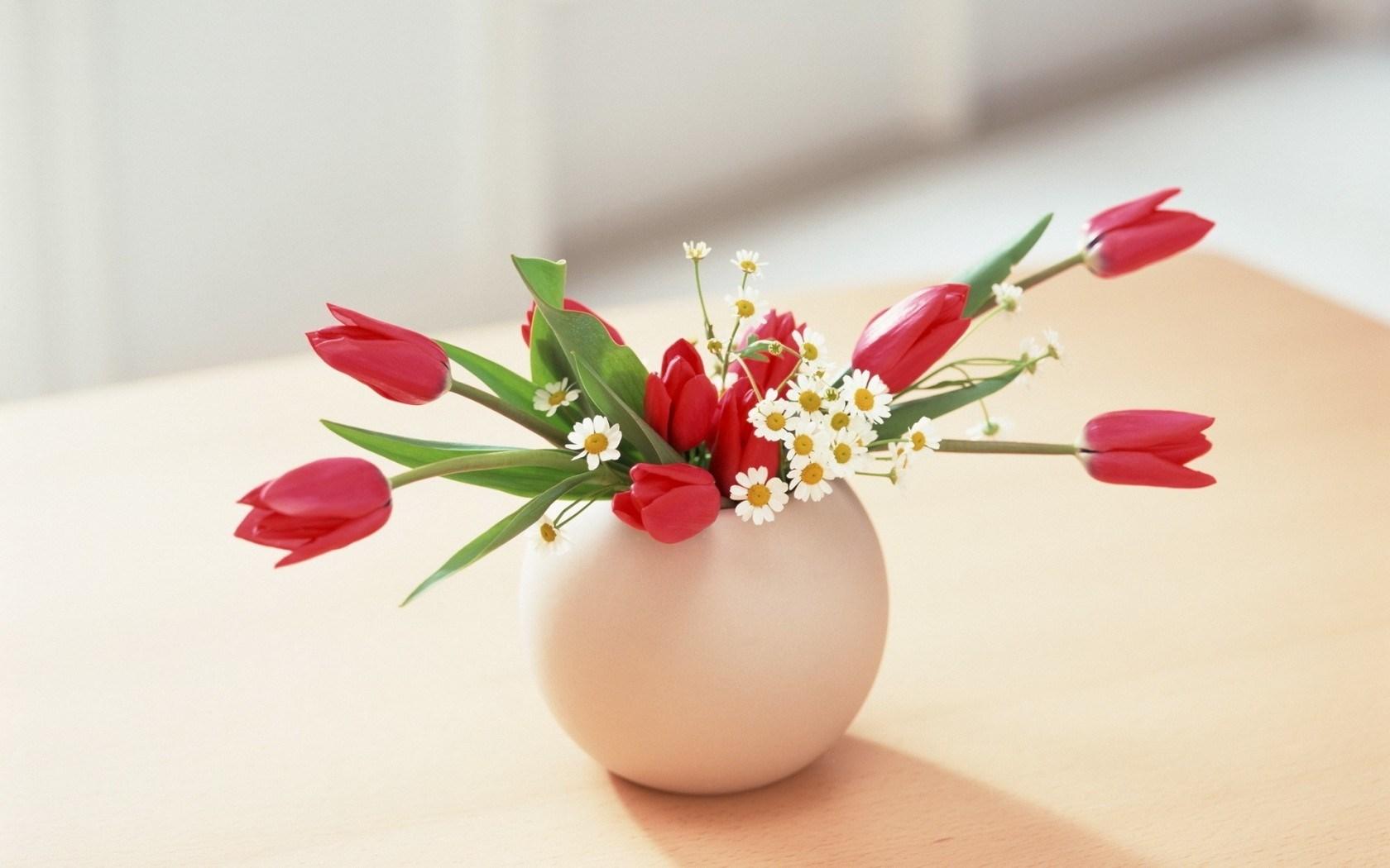 Flowers Roses Daisies Vase