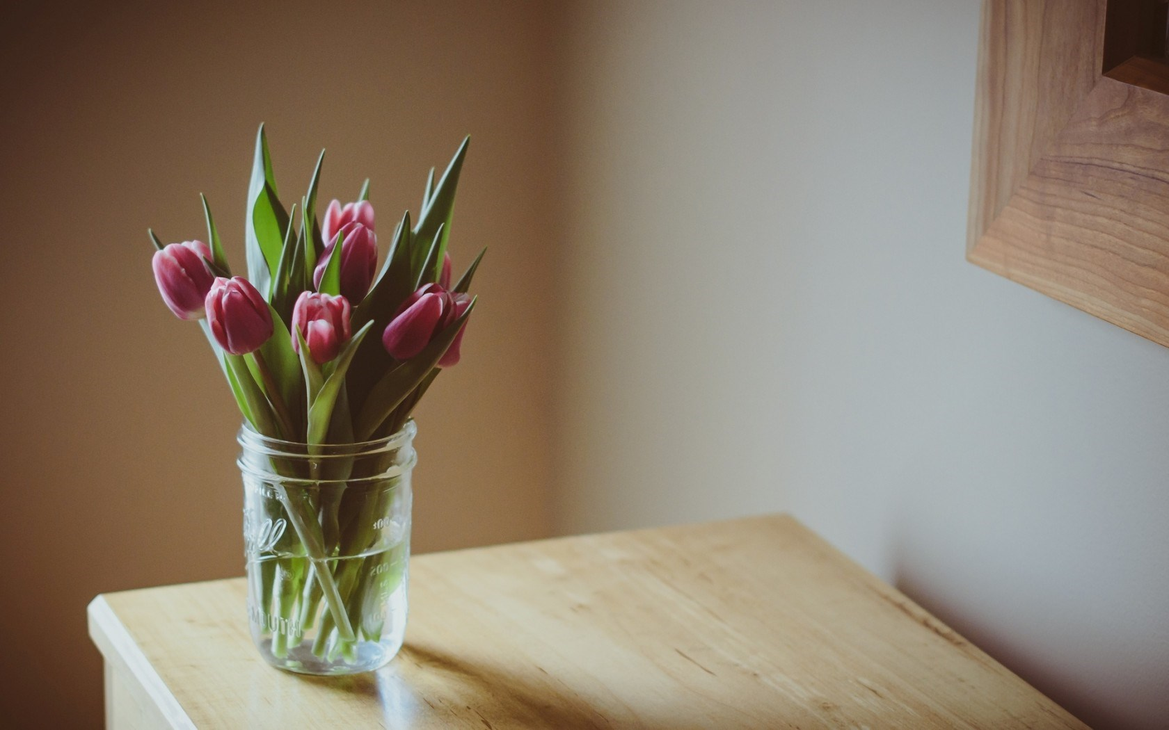 Flowers Tulips Table