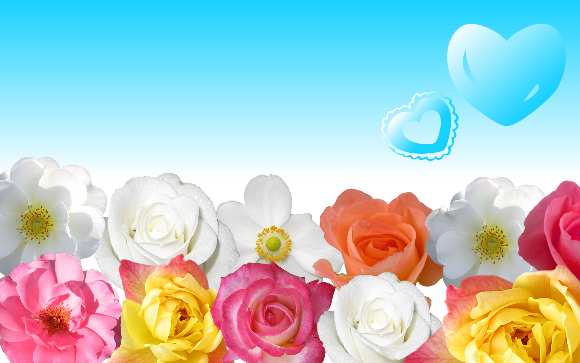 Flowers Wallpaper Download 1219