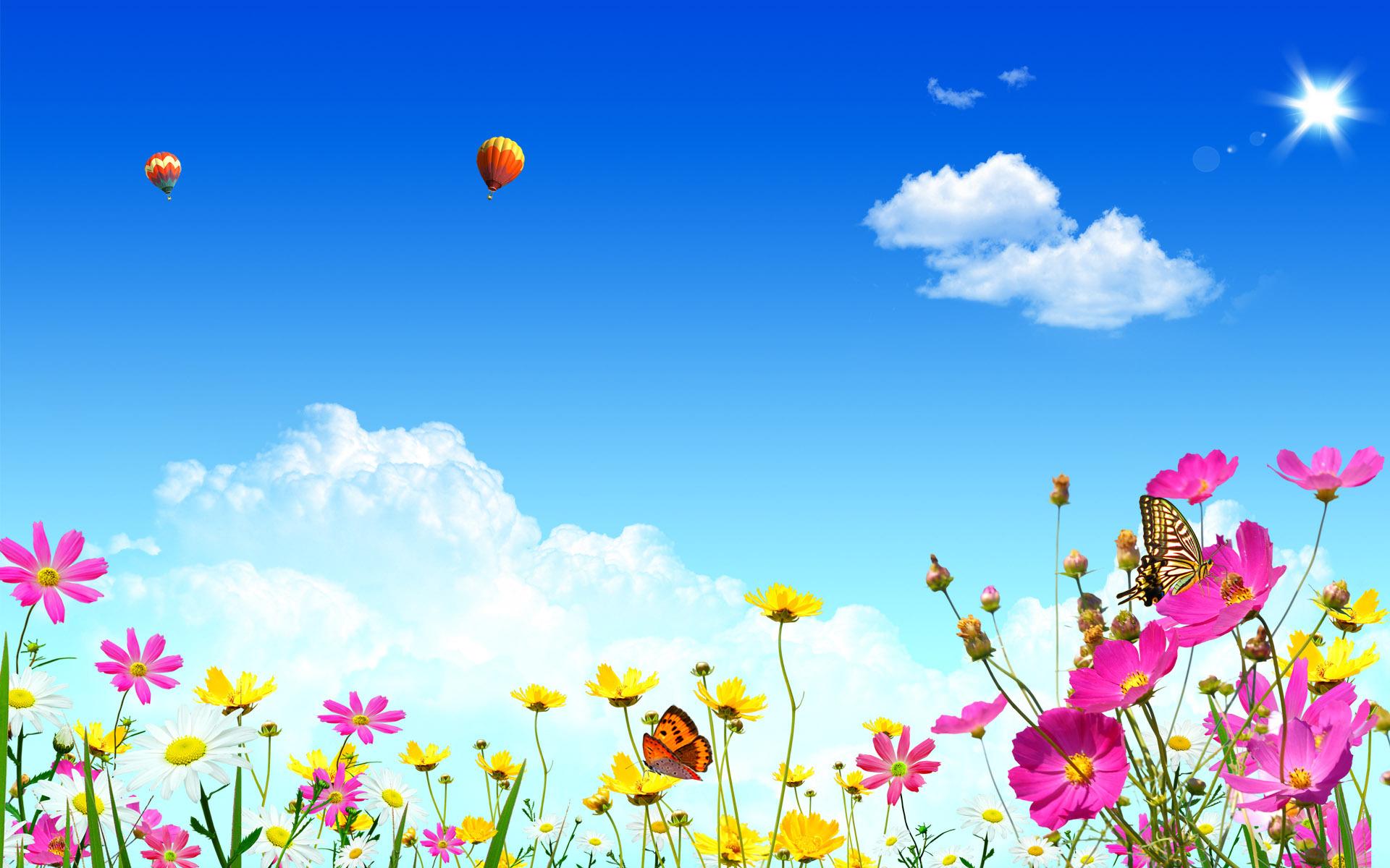 Flowers HD Wallpaper