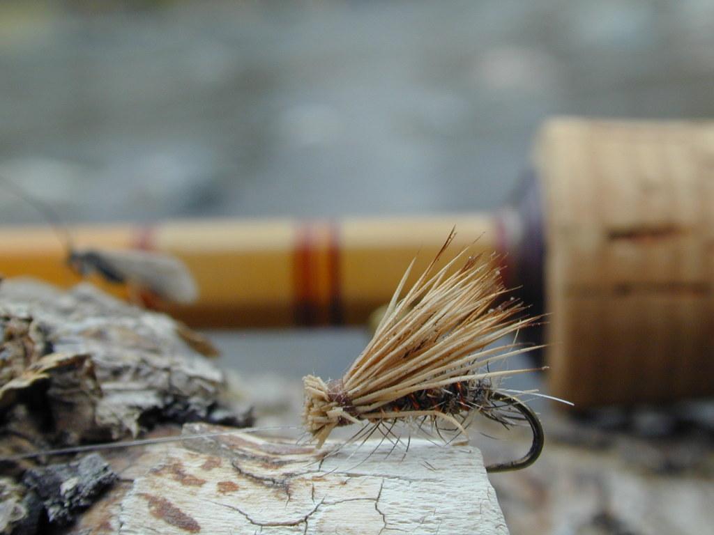 Fly Fishing Wallpaper