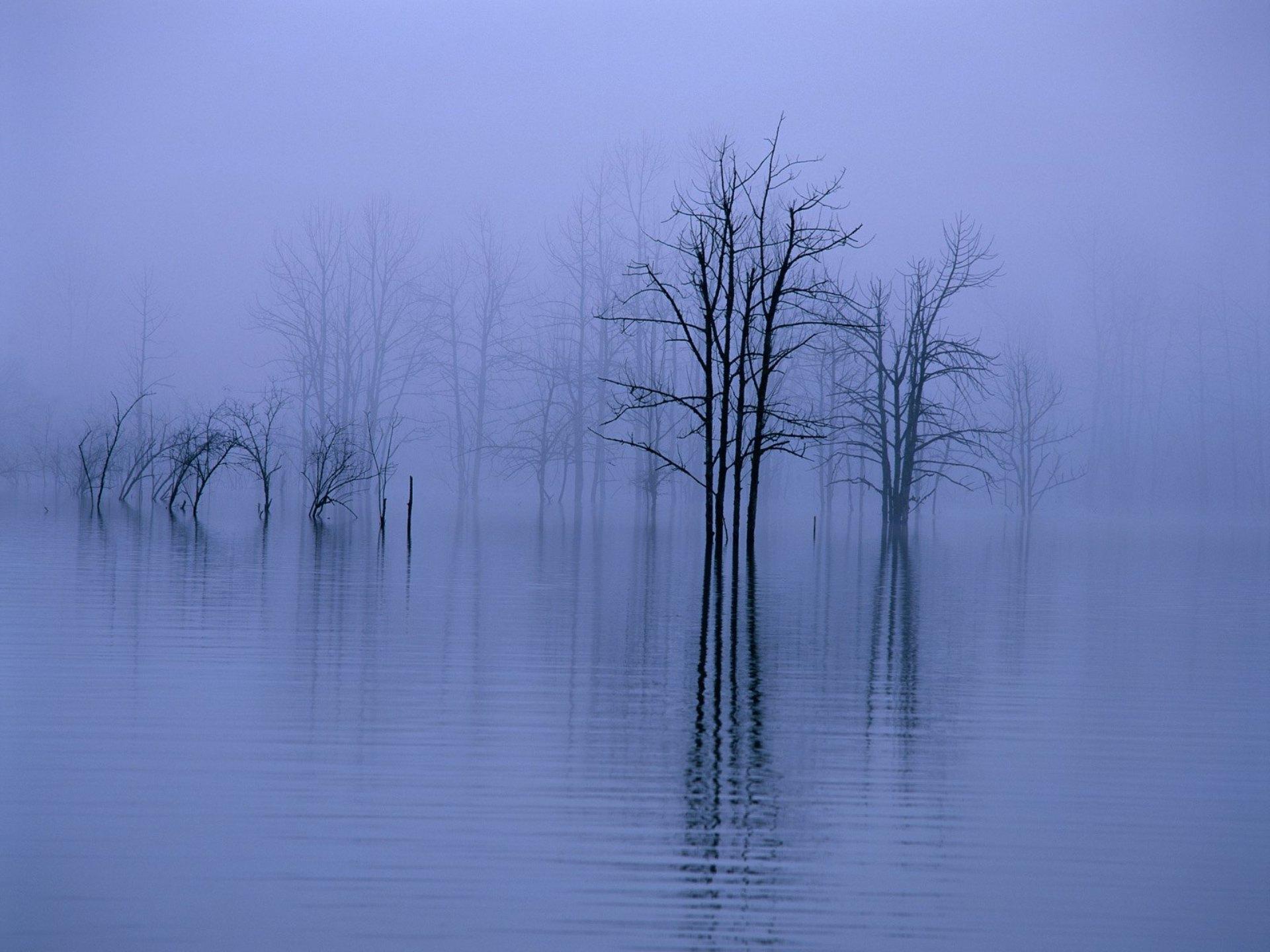 Bergamo, Lombardy, Italy Fog, water, ...