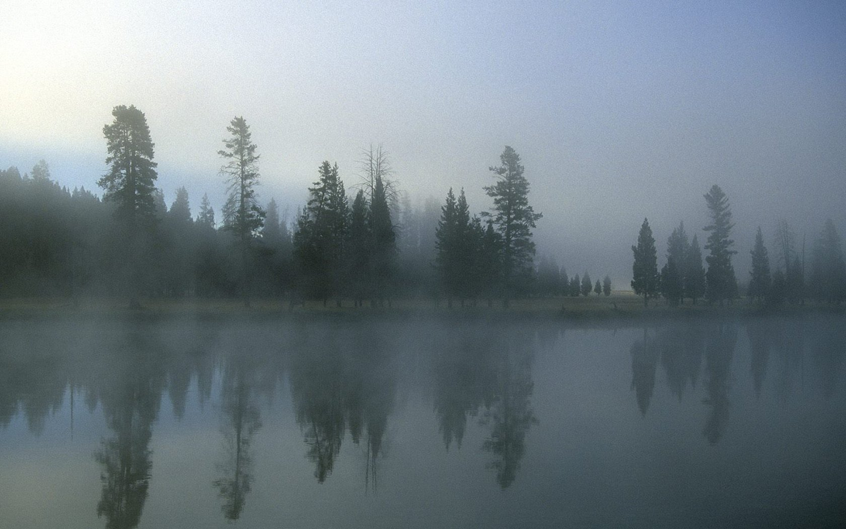 HD Wallpapers Morning Fog Over Yellowstone River Wyoming